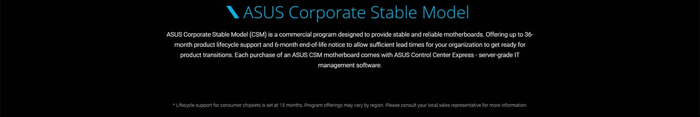ASUS Corporate Stable Model