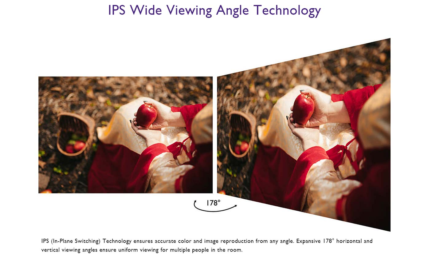 IPS Wide Viewing Angle Technology