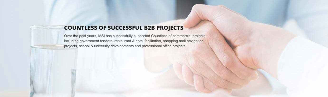 COUNTLESS OF SUCCESSFUL B2B PROJECTS