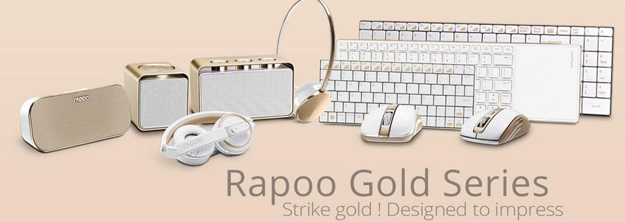 Rapoo Gold Banner